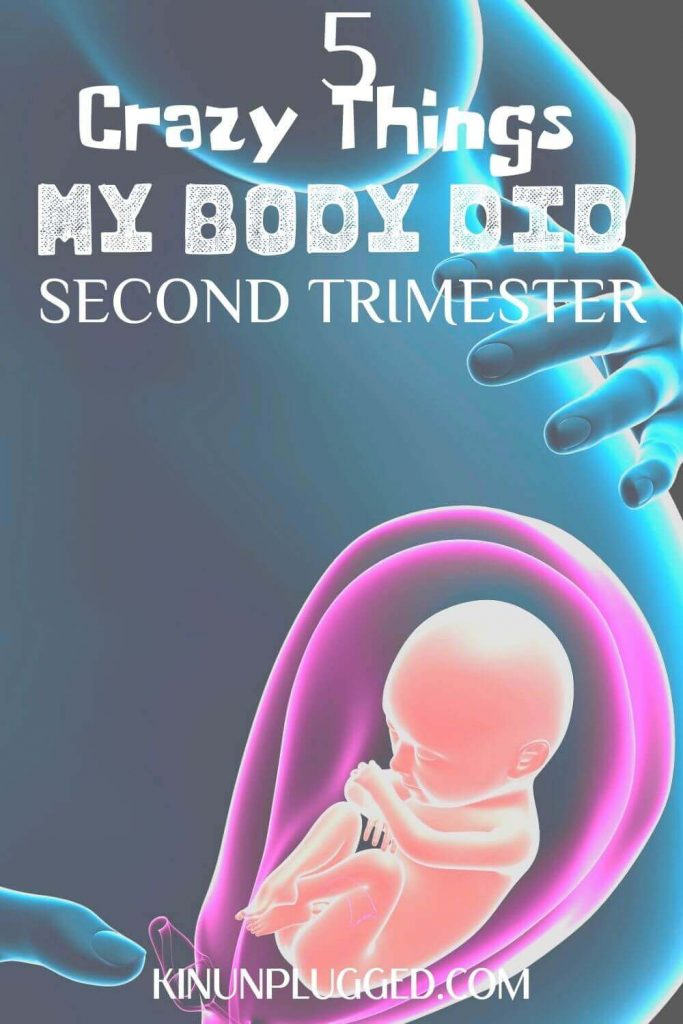 second trimester of pregnancy pin