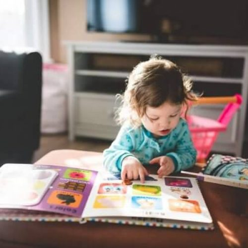 5 Greatest Parenting Books for Toddlers on Amazon under $20