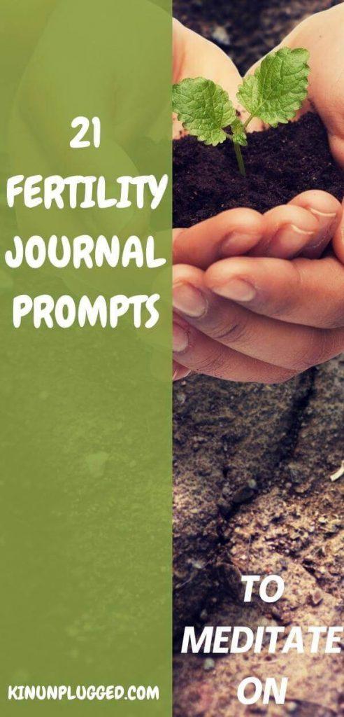 fertility journal